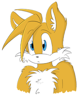 Miles Tails Prower by RosallieBroken
