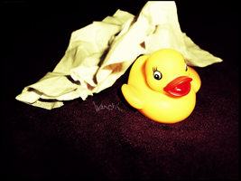 Duck by Werchik