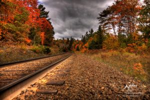 HDR Autumn Tracks 3 by Nebey