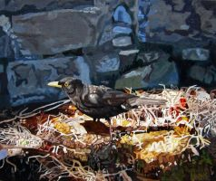 Blackbird in a Sunbeam by eastcorkpainter