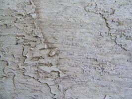 Miscellaneous Texture 11 by DKD-Stock