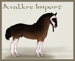 Avalkre Horse Import 5 by ReaWolf