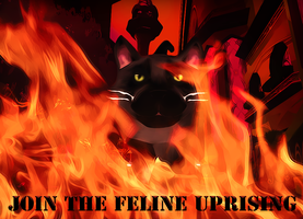 Join The Feline Uprising by MythicEl