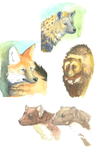 Studying animals and color by GreyMind666