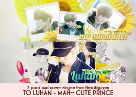 PACK PSD COVER - LUHAN#1 by NekoNguyen