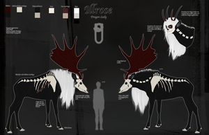 Illrose ref. sheet - Deer by Snow-sauria