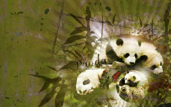Panda Cubs by only-thi