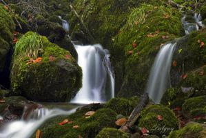 waterfall-2 by Tulgay