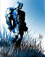 Wolverine Blue by andredesign