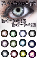 New Iris Selections 1 by VelmaGiggleWink