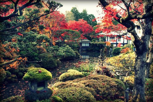 Garden in Nikko by Shreever