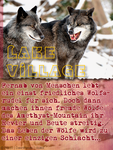 Lake Village by Silverlight-900