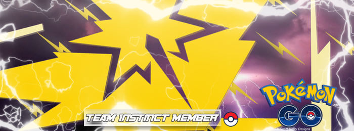 Team Instinct Facebook Cover Photo by Stealthy4u