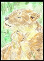 Mother  lioness and cub by wolfcub