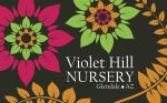 Violet Hill Nursery by Marissa-Meza