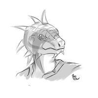 Yoyo the argonian hs by Mikkynga