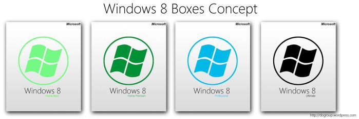 Windows 8 Boxes Concept by Dogincorp