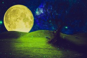 Moon Landscape by Neevel-MB