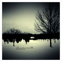 Cold and Miserable by iliek2pleh