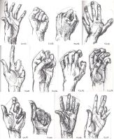 Hand sketches 2.06 by smuli