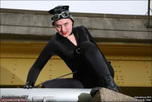 Catwoman: Ready to Pounce by EccentricCasey