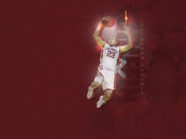 Blake Griffin Wallpaper by Kdawg24