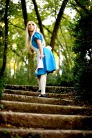 Alice in Wonderland by NadiaSK