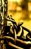 RUSTED CHAIN by meefro683