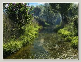 Lush Stream in Backlight by neanderdigital