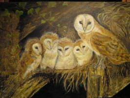 owl family by dlockett2
