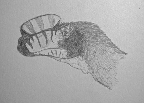 Dinovember #11: K is for Kileskus by CMIPalaeo
