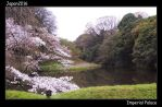Imperial Palace2 by lycanthrope-bata