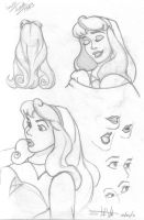 Princess Aurora by theonlysman