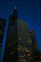 Sears Tower by andyesch