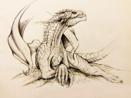 Smaug the Magnificent by franeres