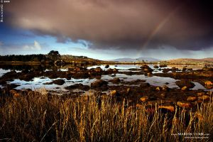 Ireland 11 by BlackdoG-MT