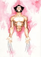 Wolvie Watercolor by BrunoBull