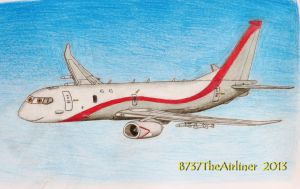 Richie The Boeing P-8A Poseidon by B737TheAirliner