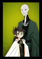 Harry And Voldy by eyugho