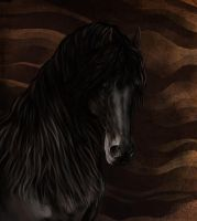 Friesian by Elsouille
