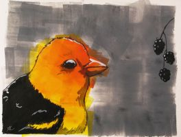 Yellow Bird and Berries by shelaghcully