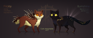 [CLOSED] Cats Adoptable Auction #5 by quacknear