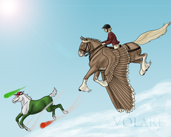 Volare by mapal