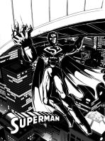 Superman The Man of Steel by timwork