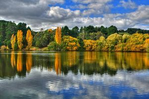 Daylesford Lake by DanielleMiner