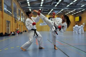 Girls Karate 2 by Thornsman
