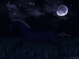 Moonlit Horse by LightningIsMyName