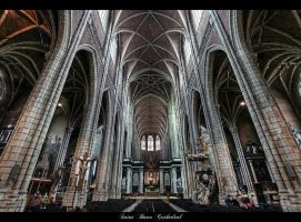 ...Saint Bavo Cathedral... by erhansasmaz