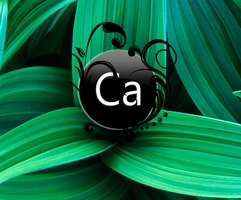 Ca Natures 1 User Image by CaHilART
