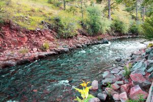 River in Estes Park by FranklymyDeer